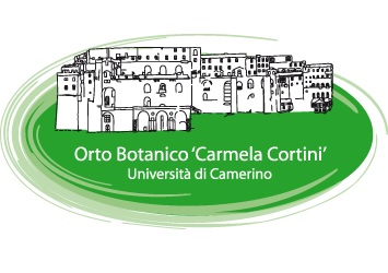 Paesaggi culturali nelle Marche. I musei emotivi | Camerino | Coordinamento ICOM Marche